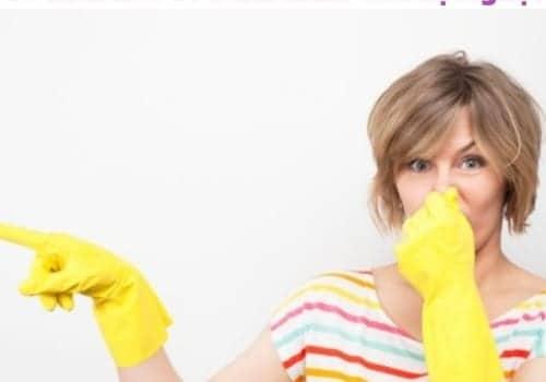 Nguyên Nhân Nào Khiến Nhà Vệ Sinh Có Mùi Hôi Có Phải Hầm Cầu Bị Nghẹt