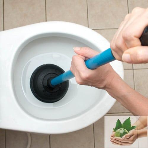 5 Cách xử lý nhà bị sinh bị tắc